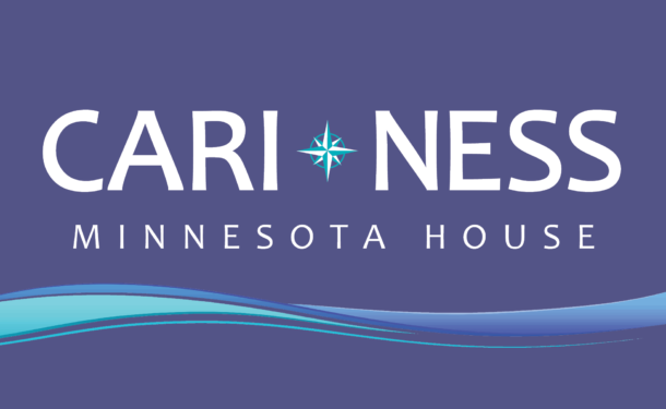 Cari Ness for State House